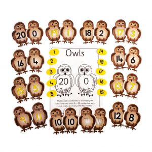 Owls, pack of 22